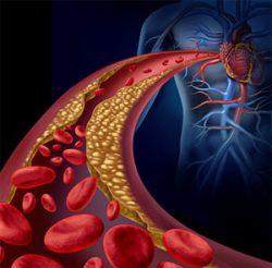 l-arginine-natural-blood-flow-booster