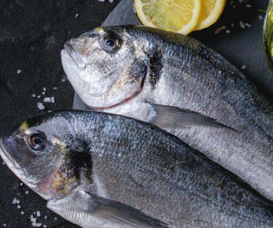 Onthuld geheim: viscollageen heeft de beste biologische beschikbaarheid